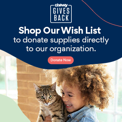 Order your Pet Food at Chewy.com and Joyful Pets Animal Rescue, Inc. will earn donations!